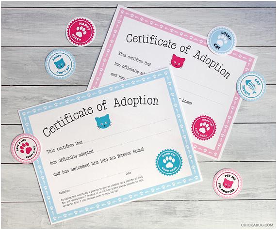 Freebie Gatos Certificado Adopción