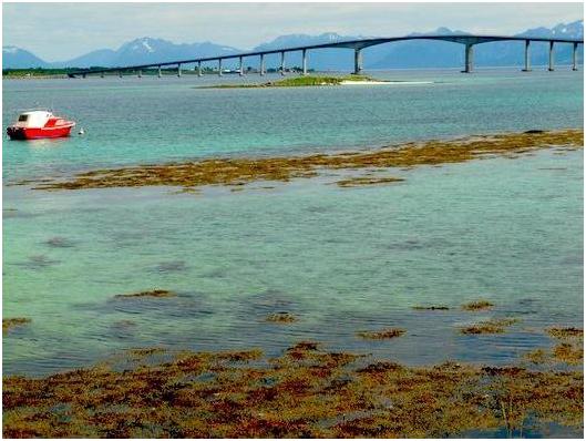 Islas Lofoten en Noruega Puente sobre Mar