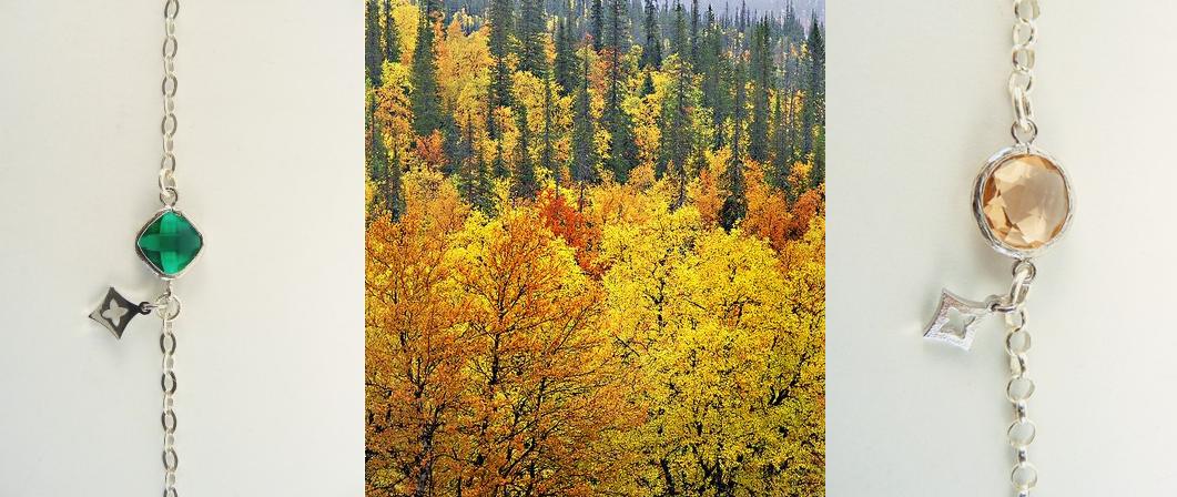 Colores del Otoño Nórdico Bosques Laponia