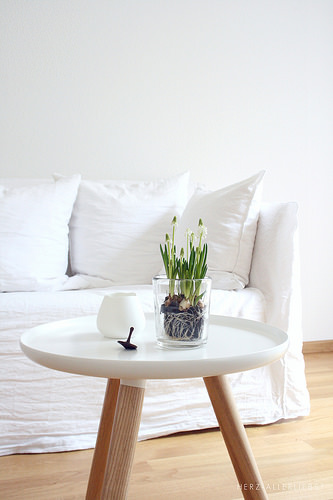 Flores de primavera blancas