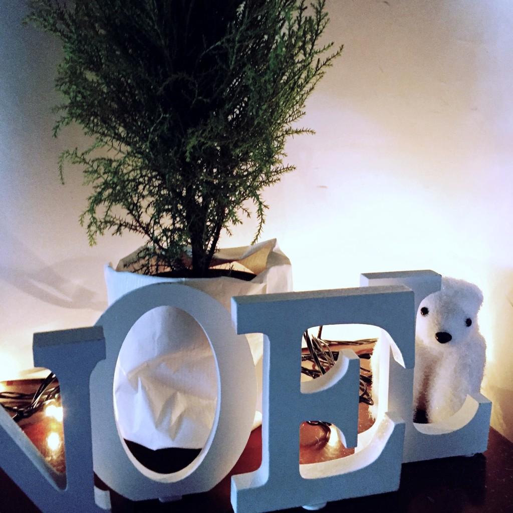 Navidad Natural 2
