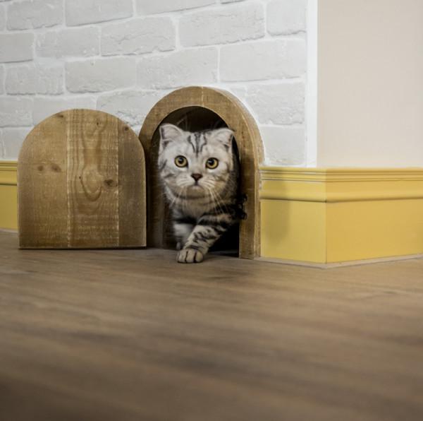 Casa Decor 2016 y loft industrial para familia con gatos