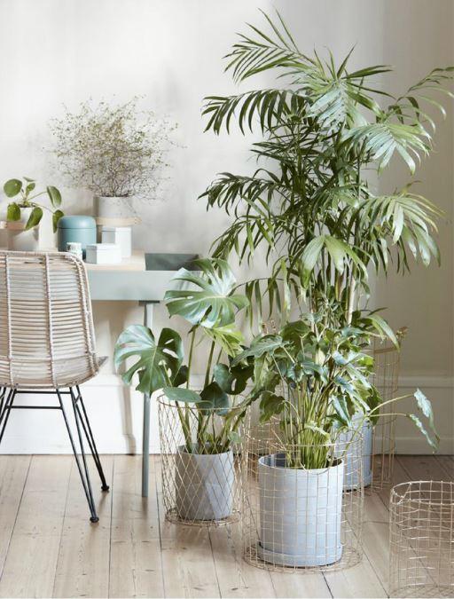 Decorar con plantas Hubsch
