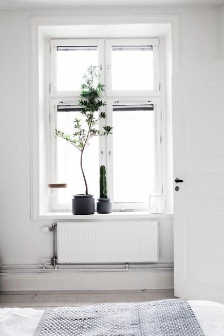 Decorar con plantas estilo nórdico