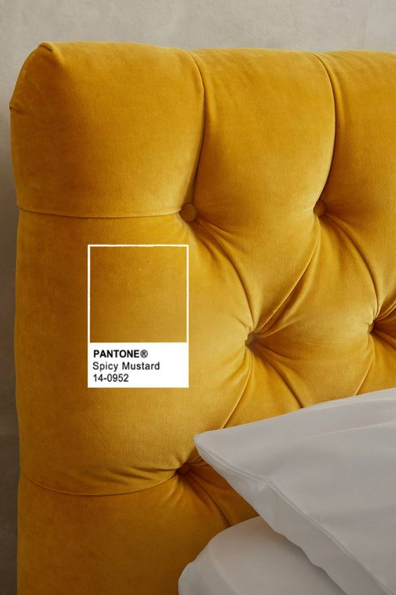 Pantone F/W 2016 - 2017 Spicy Mustard