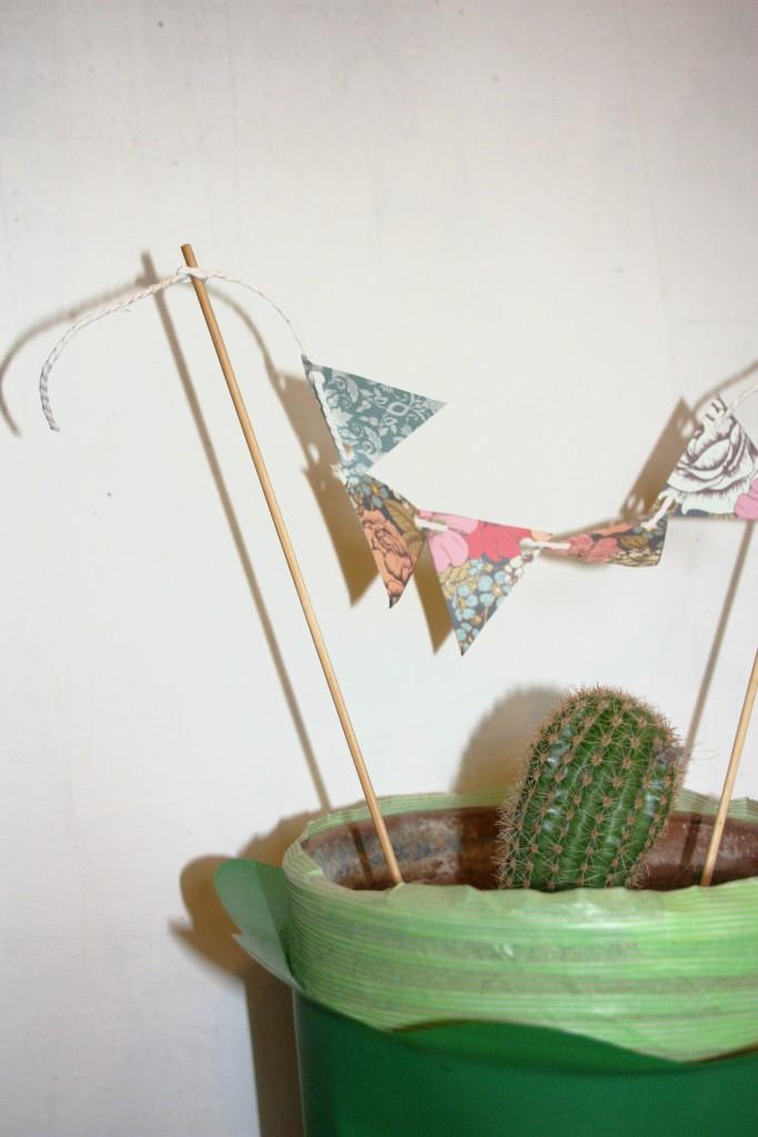 plantas para decoración nórdica cactus