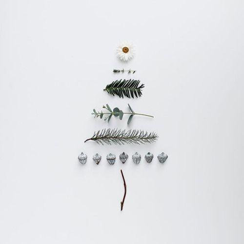 Arboles de Navidad poco tradicionales con ramas