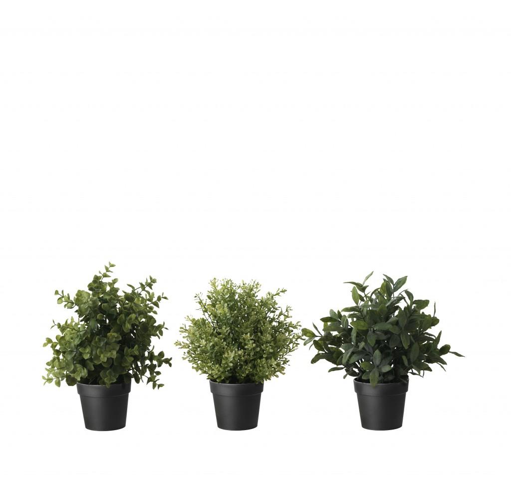 Los 10 productos preferidos de IKEA Planta FEJKA