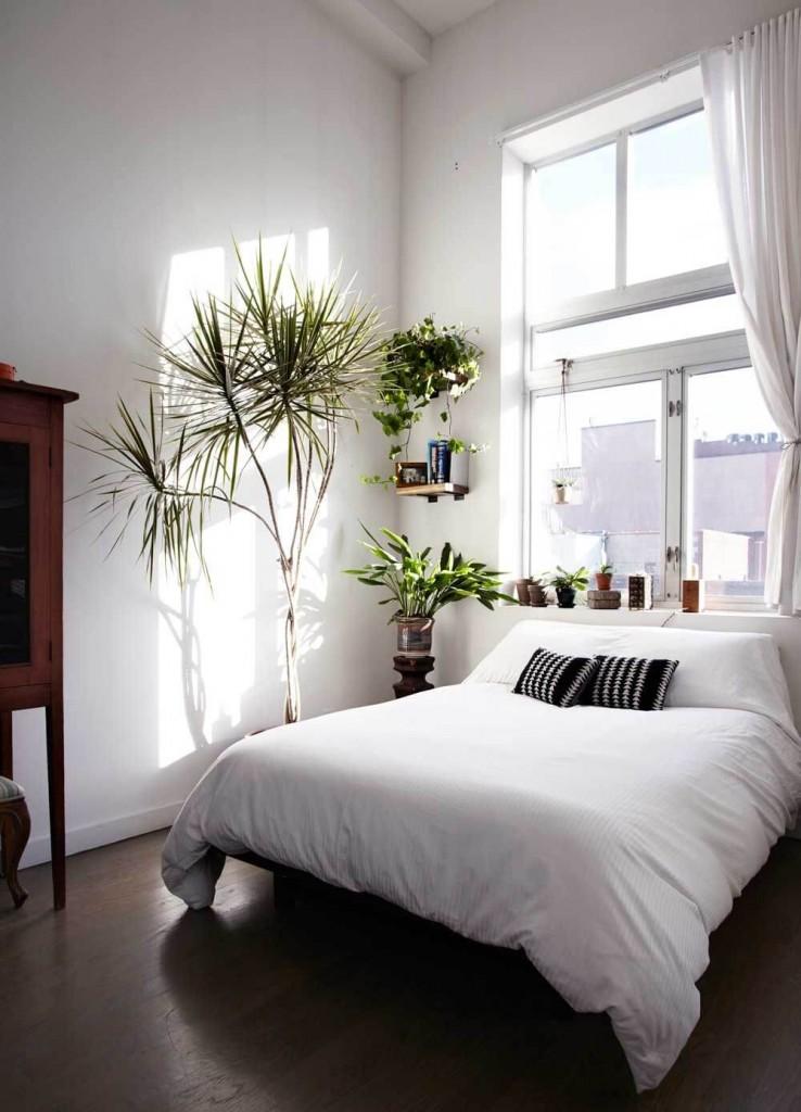 Dormitorio de estilo nórdico con plantas naturales
