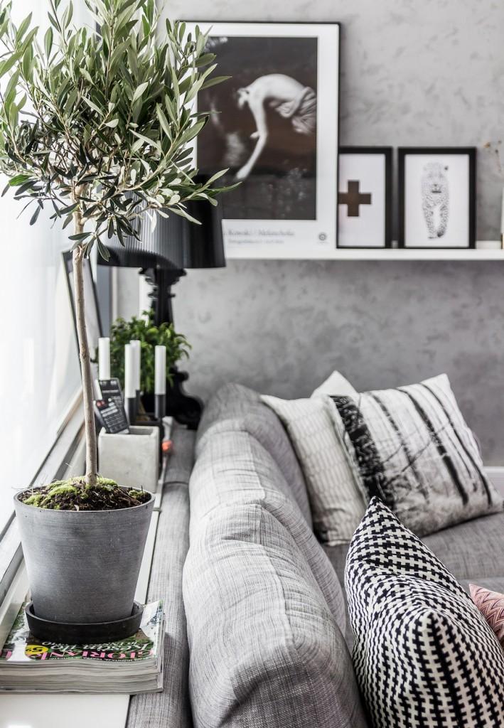 Decorar con olivos de interior espacios de estilo nórdico