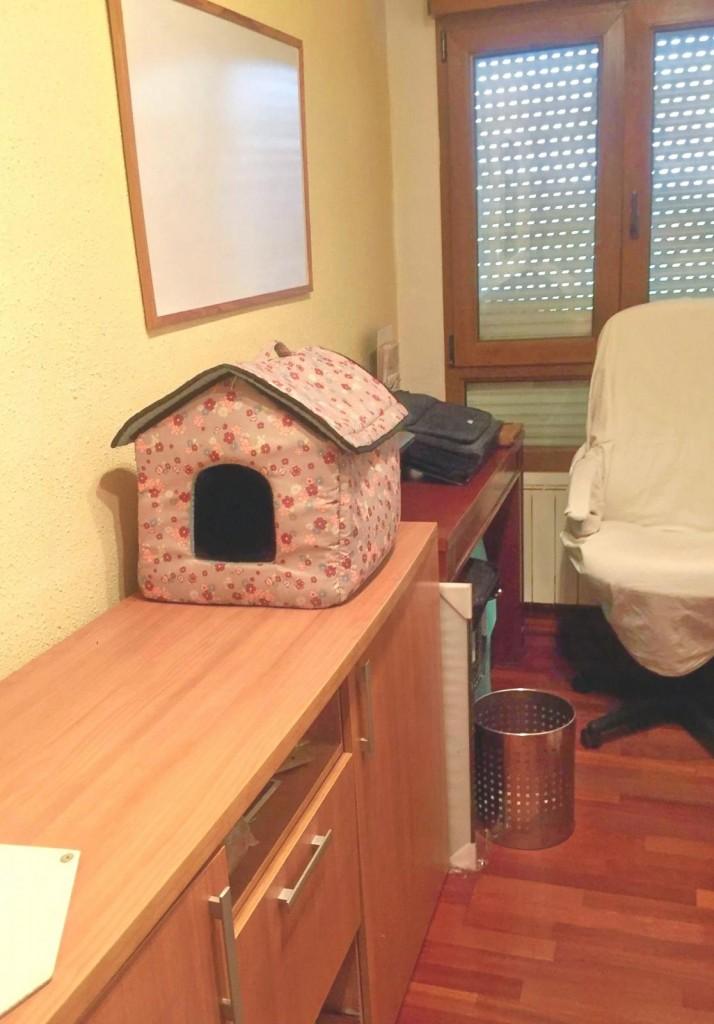 antes y después de una habitación pequeña