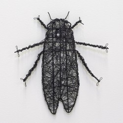 Decorar rincón de un salón con un insecto