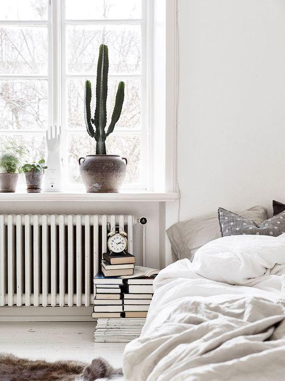 decoración nórdica con cactus