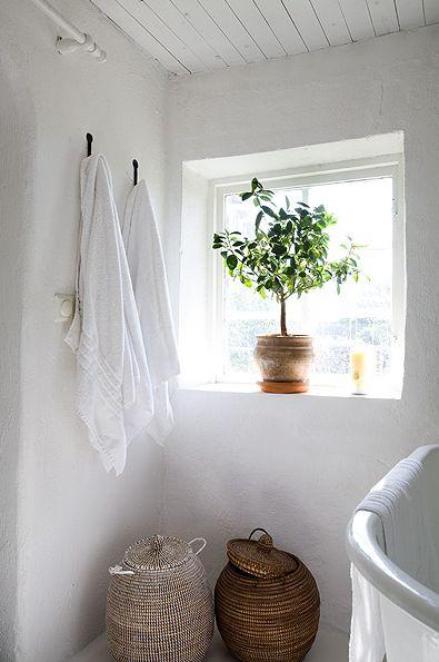 decoración viejuna en baños. después