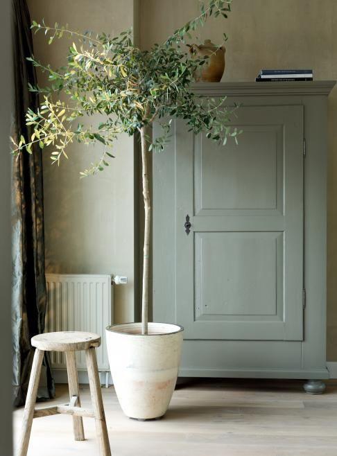 Sage green en muebles