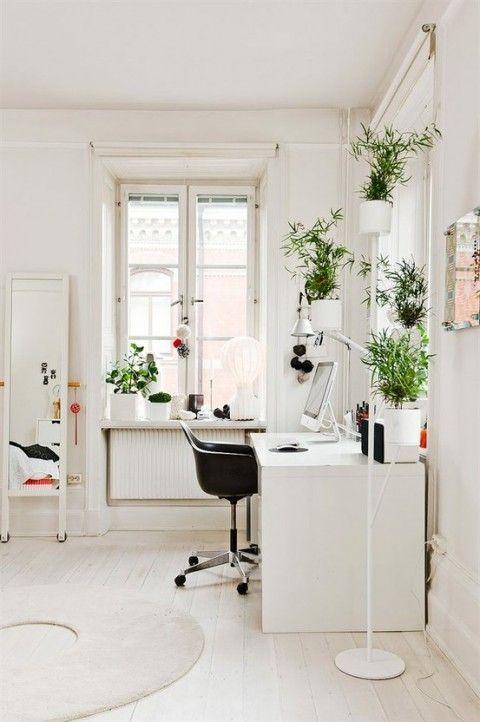 zona de trabajo con plantas